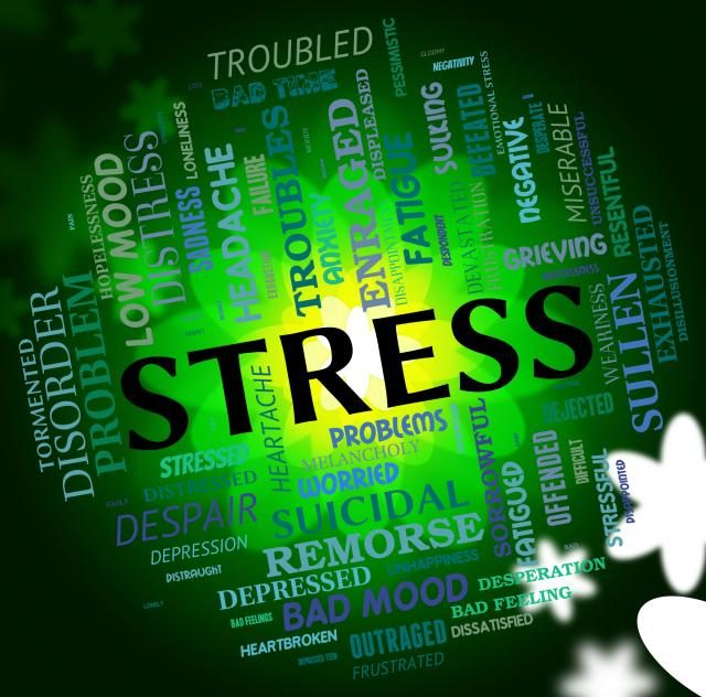 Stress- By Elera